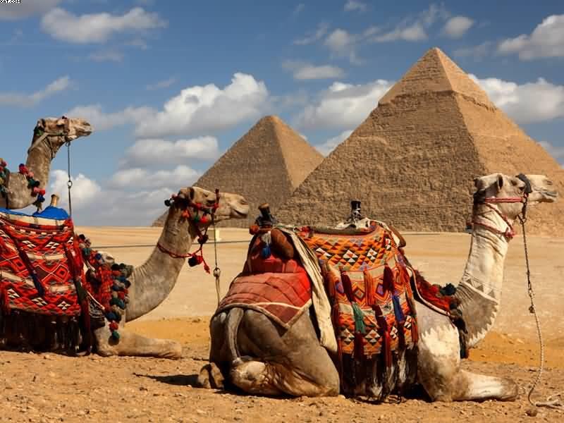 Wonders_of_Ancient_Egypt_800x600