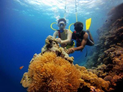 7-Scuba-Diving-Havens-in-India-You-Just-Can't-Miss-800x600-iml-trave-www.imltravel.com (9)