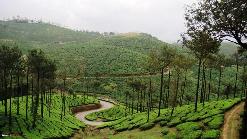Healing-Kerala-Ayurveda_IML-788x443