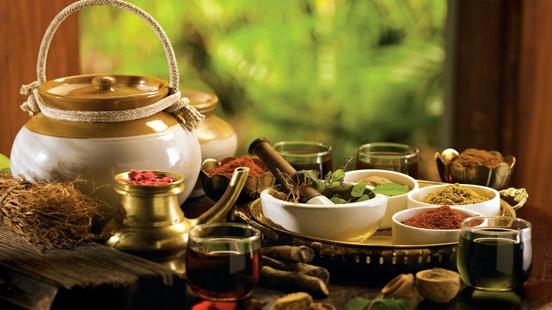 Healing-Kerala-Ayurveda_IML-788x443 (2)