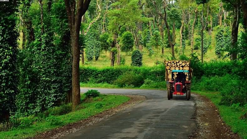 Perfect Tour for Nature Enthusiasts-Karnataka-IML-788x443 (3)