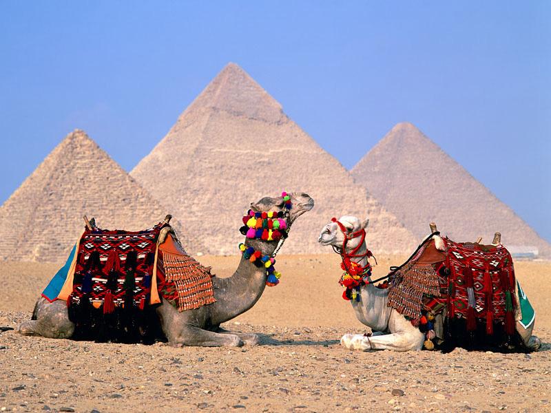 Guide-to-Pyramids-Giza-IML-Travel2