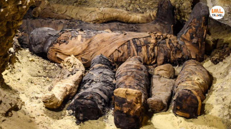 Mummies Discovered in Aswan IML Travel (2)