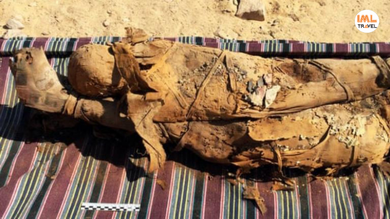 Mummies Discovered in Aswan IML Travel (7)